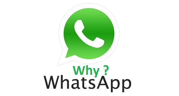 5 Reasons Why Peoples Use Whatsapp on their Daily Life