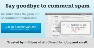WordPress Akismet API Key